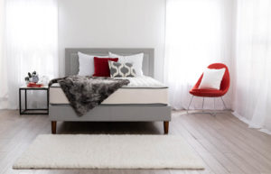 Beddings: What You Need to Know